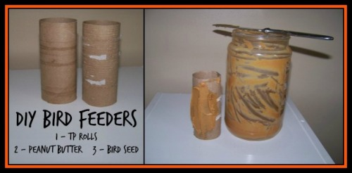 01diy feeder 1